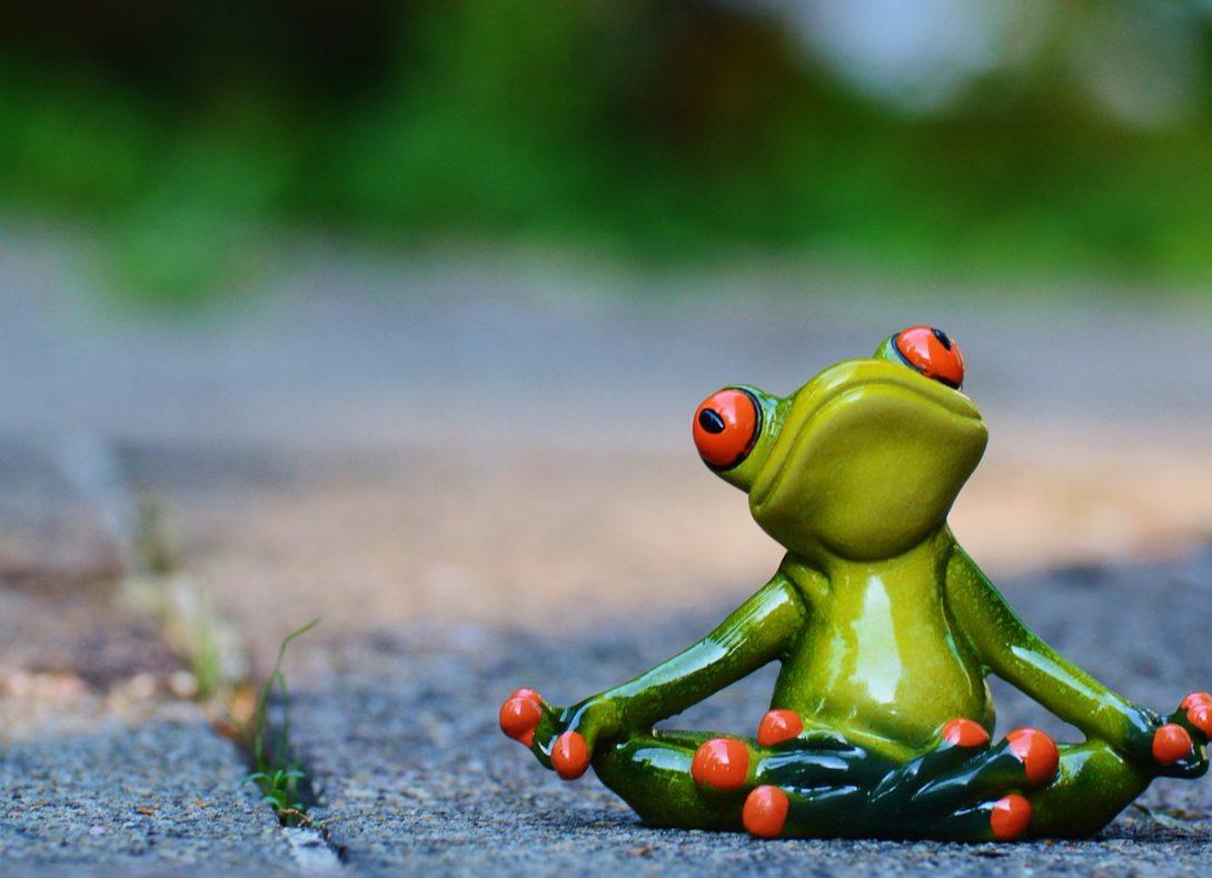 Entspannter Frosch